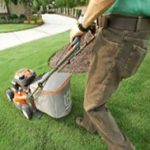 mowing the lawn with an all wheel moser